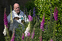 07/07/15<br /> <br /> Head Gardener, Trevor Jones, inspects deadly Monkshood/Aconitum next to poisonous Foxgloves.<br /> <br /> The Poison Garden, Alnwick Garden.<br /> <br /> All Rights Reserved: F Stop Press Ltd. +44(0)1335 418629   www.fstoppress.com.