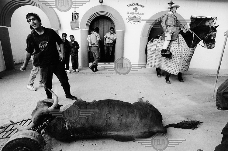 Butcher, picador and dead bull, backstage at a bullfight.