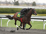 April 03, 2014: Hip 38 Line of David - Sister Girl Blues consigned by Eddie Woods worked 1/4 in 20:1.  Candice Chavez/ESW/CSM