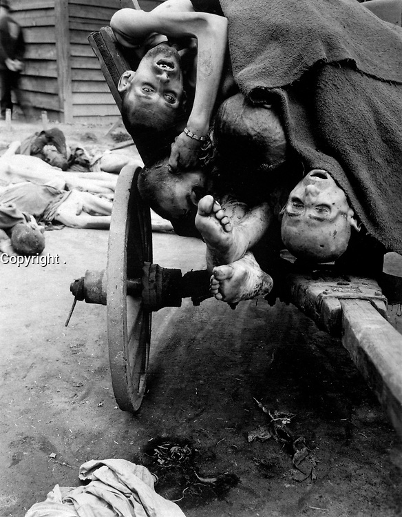 Some of the bodies being removed by German civilians for decent burial at Gusen Concentration Camp, Muhlhausen, near Linz, Austria.  Men were worked in nearby stone quarries until too weak for more, then killed.  May 12, 1945.  T4c. Sam Gilbert. (Army)<br /> NARA FILE #:  111-SC-204811<br /> WAR & CONFLICT BOOK #:  1117