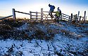 02/01/17<br />