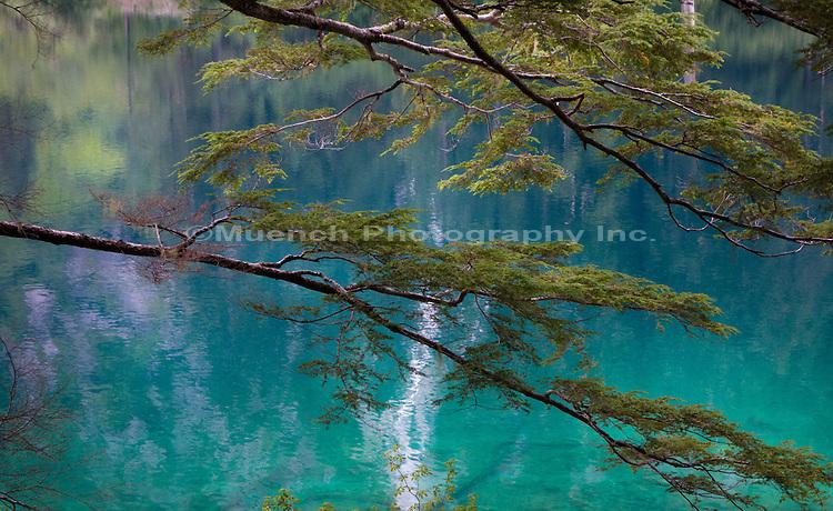Medvejie Lake, Baranof Island, Alaska