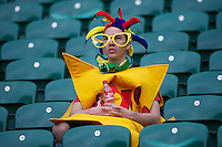 A fan waits for his friends to arrive during the iRB Marriott London Sevens at Twickenham on Saturday 11th May 2013 (Photo by Rob Munro)