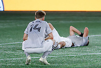 20th November 2020; Foxborough, MA, USA;  Montreal Impact midfielder Amarettos Sejdic and Montreal Impact defender Luis Binks react to allowing a late winner during the MLS Cup Play-In game between the New England Revolution and the Montreal Impact