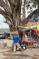 India, Dehradun. Two Men Talking near the Entrance to the Tapkeshwar Hindu Temple. String is often tied around a banyan tree, in the hope of good fortune.