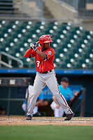 Washington Nationals Viandel Pena (3) at bat during an Instructional League game against the Miami Marlins on September 25, 2019 at Roger Dean Chevrolet Stadium in Jupiter, Florida.  (Mike Janes/Four Seam Images)