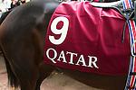Scene from around the Qatar Prix de l'Arc de Triomphe 2014.