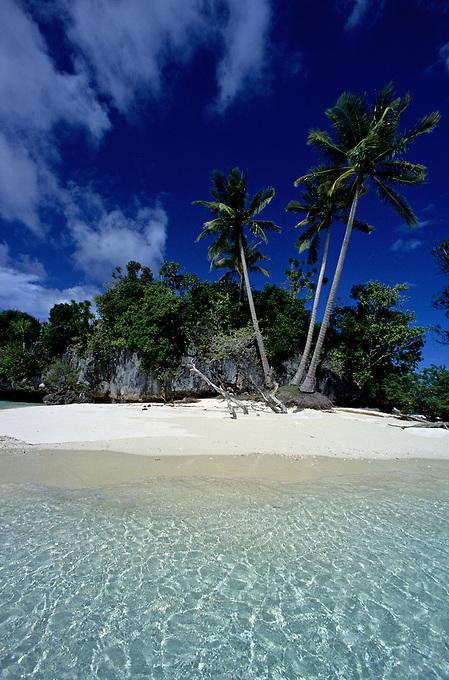 Palau Beach and Island<br /> Three Coconut Island