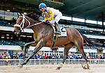 ELMONT, NY - OCTOBER 01: Forever Unbridled #2, ridden by Joel Rosario, wins the Beldame Stakes on Turf Classic Day at Belmont Park on October 1, 2016 in Elmont, New York. (Photo by Scott Serio/Eclipse Sportswire/Getty Images)