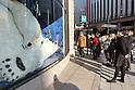 Massive polar bear family sleeping in Ginza shop window