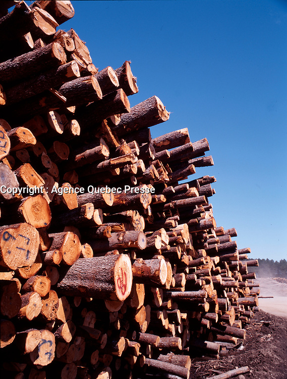 1998 File Photo, <br /> wood log near the St-Michel des Saints<br /> wood panel factory, now owned by Louisian Pacific which shut it down in august 2006, because of wood low price, strond Canadaian Dollar and increased cutting fees inposed by Quebec Government.<br /> <br /> PHOTO : Agence Quebec Presse