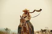 Para State, Amazon, Brazil. Gaucho - cowboy - with his mule and a 'Berrante de Boi' bull horn trumpet on horseback.