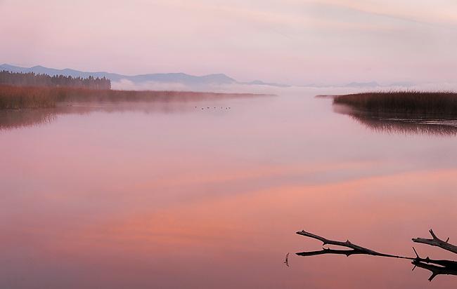 Dawn at Klamath Lake marsh.