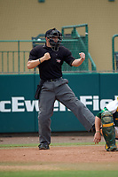 Umpire Chris Tipton during a South Florida Bulls game against the Dartmouth Big Green on March 27, 2016 at USF Baseball Stadium in Tampa, Florida.  South Florida defeated Dartmouth 4-0.  (Mike Janes/Four Seam Images)