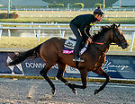 January 21, 2021: Storm the Court exercises as horses prepare for the 2021 Pegasus World Cup Invitational at Gulfstream Park in Hallandale Beach, Florida. Scott Serio/Eclipse Sportswire/CSM