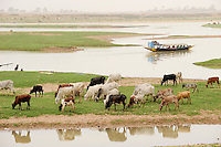 "Westafrika Mali Fluss Niger bei Mopti - Wasser  | .Africa Mali river Niger at Mopti .| [ copyright (c) Joerg Boethling / agenda , Veroeffentlichung nur gegen Honorar und Belegexemplar an / publication only with royalties and copy to:  agenda PG   Rothestr. 66   Germany D-22765 Hamburg   ph. ++49 40 391 907 14   e-mail: boethling@agenda-fototext.de   www.agenda-fototext.de   Bank: Hamburger Sparkasse  BLZ 200 505 50  Kto. 1281 120 178   IBAN: DE96 2005 0550 1281 1201 78   BIC: ""HASPDEHH"" ,  WEITERE MOTIVE ZU DIESEM THEMA SIND VORHANDEN!! MORE PICTURES ON THIS SUBJECT AVAILABLE!! ] [#0,26,121#]"