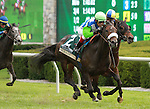 23 October. Senada and Edgar Prado win the 20th running of the Rood and Riddle Dowager (Listed) $125,000 at Keeneland Racecourse for owner Lael Stables and trainer Barclay Tagg.