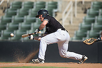 Nate Nolan (24) of the Kannapolis Intimidators lays down a bunt against the Greensboro Grasshoppers at Intimidators Stadium on July 17, 2016 in Greensboro, North Carolina.  The Intimidators defeated the Grasshoppers 3-2 in game one of a double-header.  (Brian Westerholt/Four Seam Images)