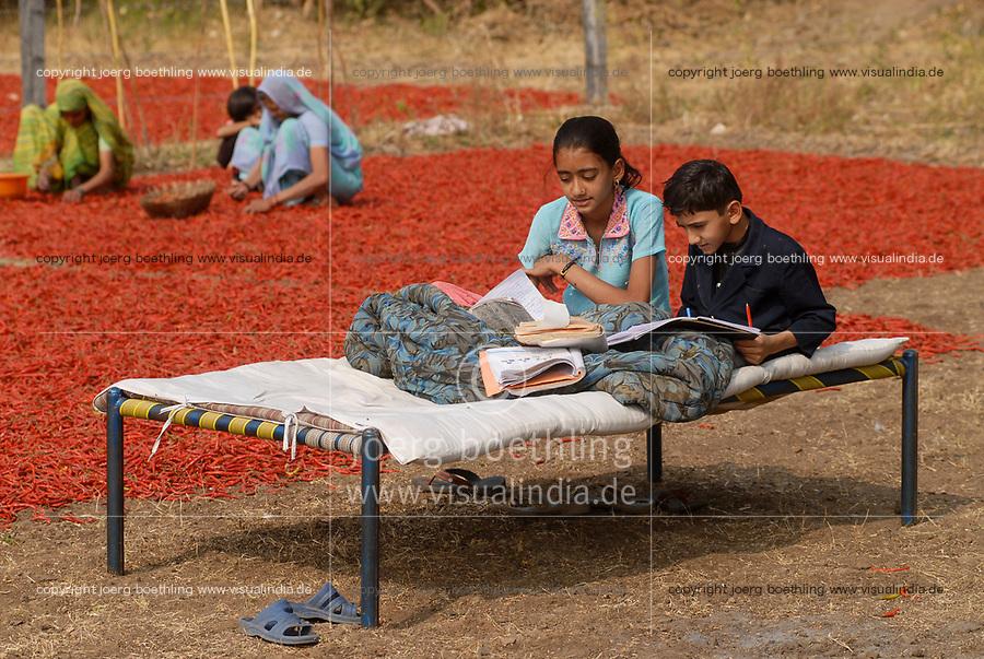 INDIA Madhya Pradesh , harvest and drying of red chilies at farm, children sitting on bed and doing their school homework / INDIEN, Ernte und Trocknung von roten Chilies, Kinder machen ihre Schulhausaugaben