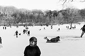 Sledding in Prospect Park 2013