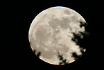 The supermoon rises east of Gardnerville, Nev., on Monday, Jan. 1, 2018.<br /> Photo by Cathleen Allison/Nevada Momentum
