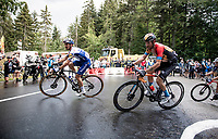 Julian Alaphilippe (FRA/Deceuninck-QuickStep) up the Col de Porte (final climb to the finish)<br /> <br /> Stage 2: Vienne to Col de Porte (135km)<br /> 72st Critérium du Dauphiné 2020 (2.UWT)<br /> <br /> ©kramon