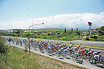 The peloton in action during Stage 6 of the 2015 Presidential Tour of Turkey running 184km from Denizli to Selcuk. 30th April 2015.<br /> Photo: Tour of Turkey/Mario Stiehl/www.newsfile.ie
