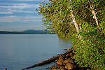 View of Rangeley Lake from the campground at Rangeley Lakes State Park, Maine, USA.