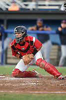 Batavia Muckdogs catcher Rodrigo Vigil (27) checks the runner after blocking a pitch in the dirt during a game against the State College Spikes on July 3, 2014 at Dwyer Stadium in Batavia, New York.  State College defeated Batavia 7-1.  (Mike Janes/Four Seam Images)