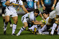 Lee Dickson of Northampton Saints passes from the base of the ruck during the LV= Cup second round match between Ospreys and Northampton Saints at Riverside Hardware Brewery Field, Bridgend (Photo by Rob Munro)