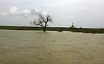 A tree is seen with his trunk submerged under water at  Irrawaddy Division, May 10, 2008. Despairing survivors in Myanmar awaited emergency relief on Friday, a week after 100,000 people were feared killed as the cyclone roared across the farms and villages of the low-lying Irrawaddy delta region. The storm is the most devastating one to hit Asia since 1991, when 143,000 people were killed in neighboring Bangladesh. Photo by Eyal Warshavsky  *** Local Caption *** ëì äæëåéåú ùîåøåú ìàéì åøùáñ÷é àéï ìòùåú áúîåðåú ùéîåù ììà àéùåø