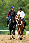 June 4, 2021:  Tizamagician at Belmont Park in Elmont, New York on June 4, 2021. Evers/Eclipse Sportswire/CSM