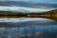 Denali Reflecting Pool