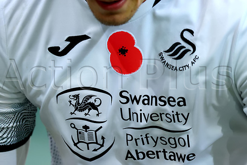7th November 2020; Carrow Road, Norwich, Norfolk, England, English Football League Championship Football, Norwich versus Swansea City; The poppy badge is seen on the shirt worn by Connor Roberts of Swansea City