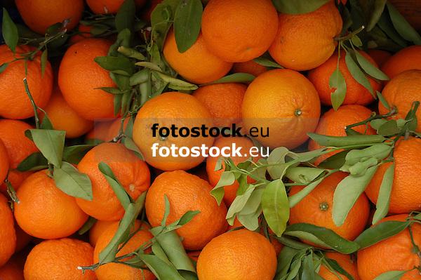 fresh oranges<br /> <br /> naranjas frescas<br /> <br /> frische Orangen<br /> <br /> 3008 x 2000 px<br /> 150 dpi: 50,94 x 33,87 cm<br /> 300 dpi: 25,47 x 16,93 cm
