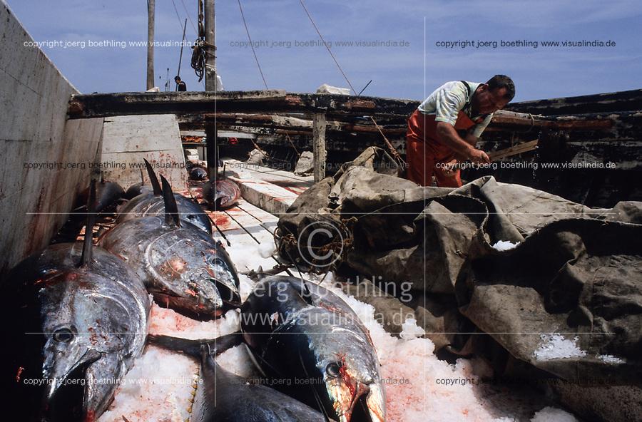 ITALY, Sicily, Egedian island Favignana, La Mattanza, traditional fishing of bluefin Tuna fish, transport of Tuna with ice back to the port