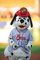 Peoria Chiefs mascot Homer during a game against the Wisconsin Timber Rattlers on August 21, 2015 at Dozer Park in Peoria, Illinois.  Wisconsin defeated Peoria 2-1.  (Mike Janes/Four Seam Images)