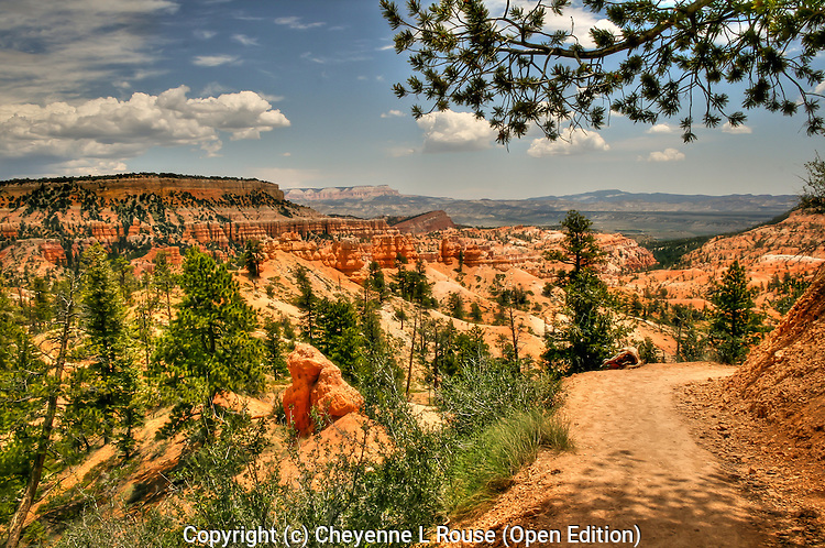 The Fairyland Trail in Bryce Canyon NP - Utah