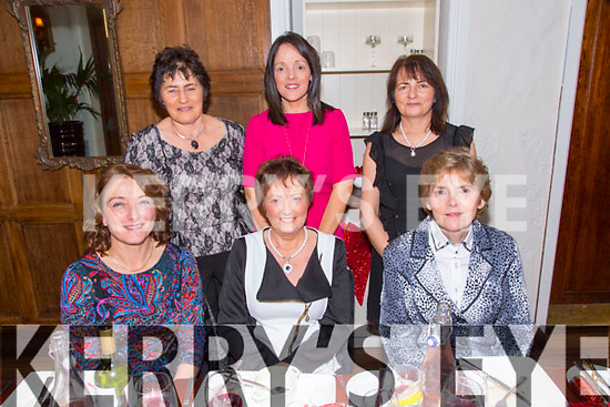 Friends celebrating Christmas at Denny Lane on Friday.  Front l-r Ann Bulman, Annmarie Herlihy, Josephine Griffin.  Back l-r Kathleen Horan, Sinead Purcell, Sheila Coffey