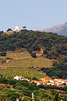 Vineyard. La Salette hilltop chapel. Banyuls sur Mer, Roussillon, France