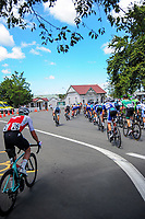 Stage Three of the 2018 NZ Cycle Classic UCI Oceania Tour (Masterton to Martinborough) in Wairarapa, New Zealand on Friday, 19 January 2018. Photo: Dave Lintott / lintottphoto.co.nz