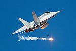 RAAF Air Shows