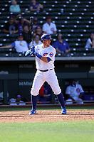 PJ Higgins - Chicago Cubs 2021 spring training (Bill Mitchell)