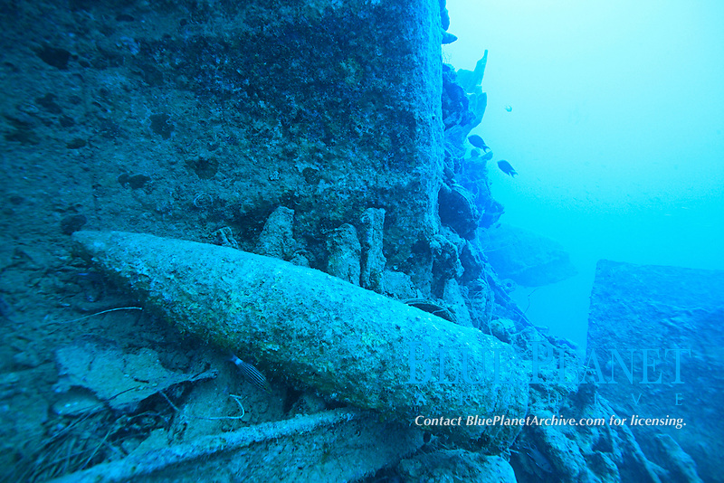 wreck, Red Sea, Egypt