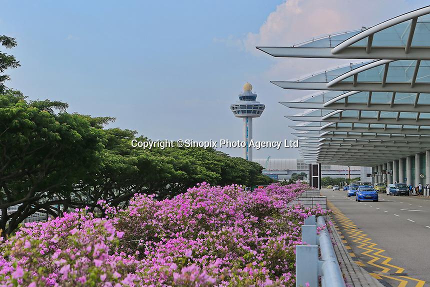 Changi airport, Terminal 1, Singapore, 13 August 2015.
