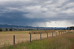 Pastoral scene of freshly harvested hay, Bitterroot Valley, Montana.  Image is south of the hamlet of Stanleyville and north of fabulous Hamilton.