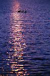 2503  Island Bound - Canadian Geese (Branta candensis) Southern, South Dakota..#PRINT-2503.00