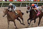 March 29, 2014: Jockey Paco Lopez and Gamay Noir gets by on the outside in Rampart(G3) on Florida Derby day at Gulfstream Park in Hallandale Beach (FL). Arron Haggart/ESW/CSM