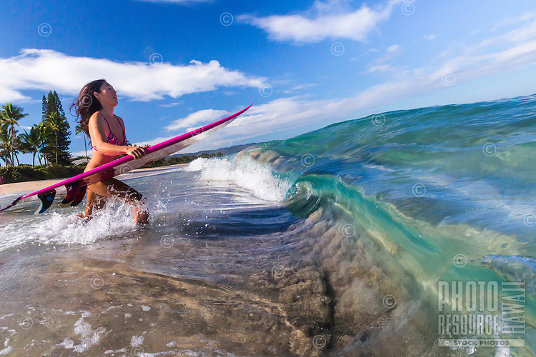 A local surfer girl runs into the ocean for a surf session, Laniakea, North Shore, O'ahu.