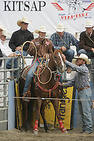 26 Aug 2010:  Tuff Cooper scored a time of 8.2 in the slack Tie Down Roping competition at the Kitsap County Stampede Wrangle Million Dollar PRCA Silver Rodeo Tour Bremerton, Washington.